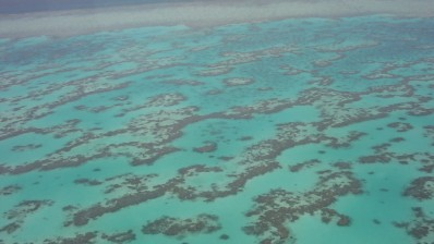 Government Unveils 2050 Great Barrier Reef Plan